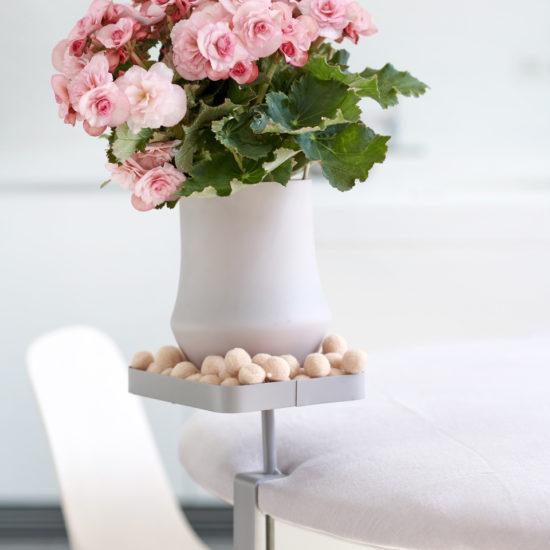 rose rosa in vaso